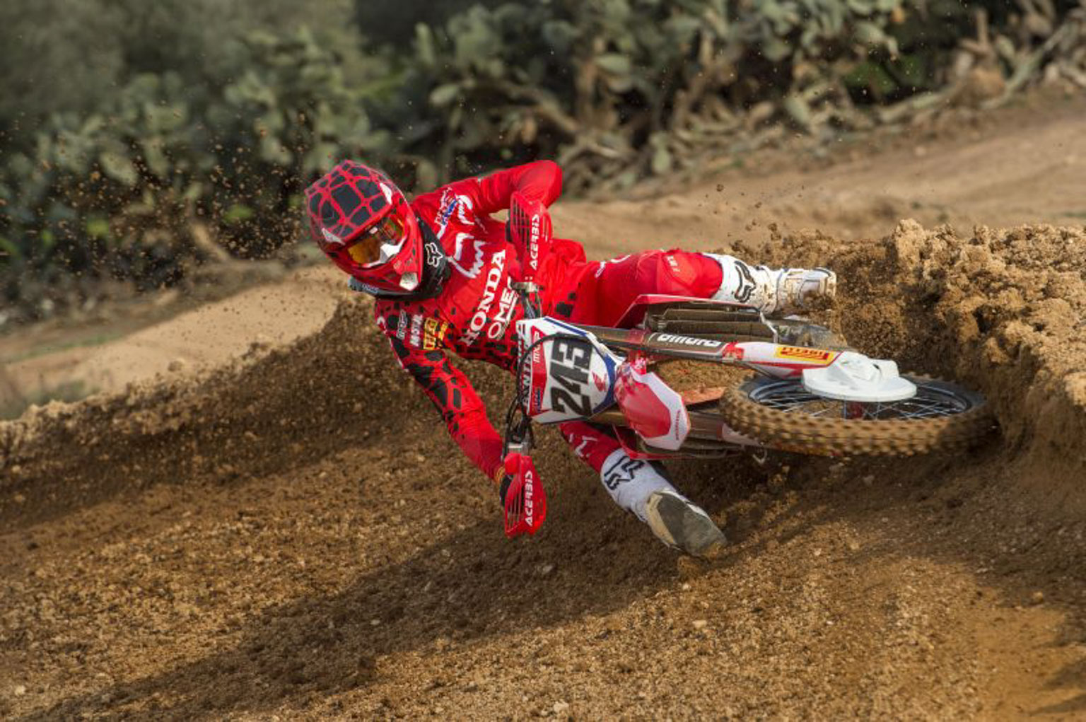 Can Tim Gajser retain his crown?